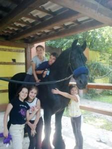 """Impariamo ad """"accudire i cavalli"""""""